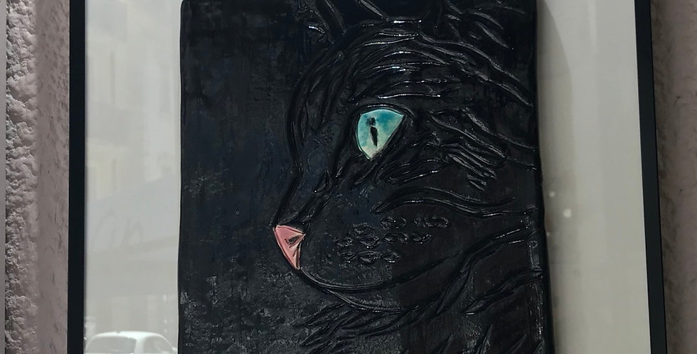 Le chat noir aux yeux bleus