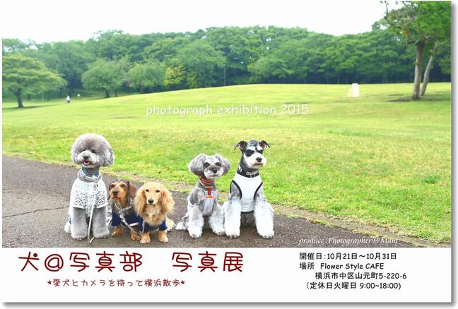 犬@写真部 写真展のお知らせ