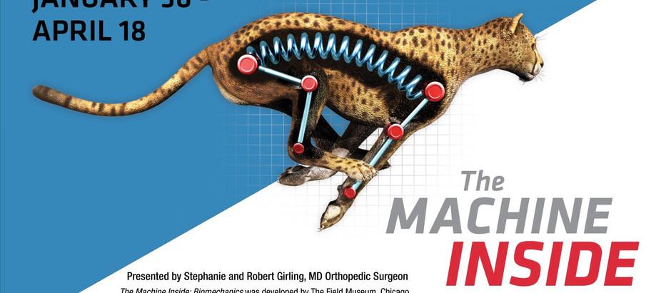 The Machine Inside BIOMECHANICS
