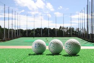course_ball2.jpg