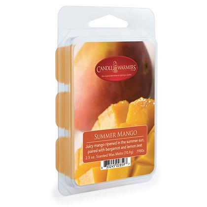 Summer Mango Melts 2.5 Oz