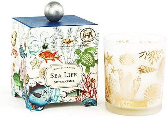 Sea Life 6.5 Ounce Keepsake Box Candle