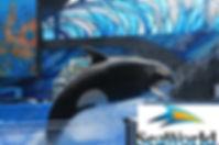 SeaWorld 2.jpg