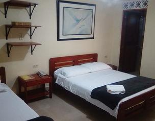 habitacion 2 camas hotel caldas plaza.jp