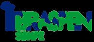 BRASPEN_Logo-01 - 2016.png