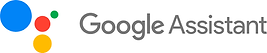 Google Assistant.png