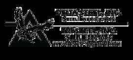 DeltaTriSteel-Logo.png