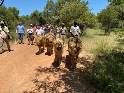 África do Sul (3)