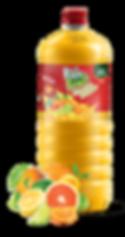 Garrafa Pura Fruit