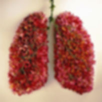 flower lungs.jpg