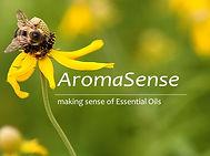 AromaSense-crl.jpg