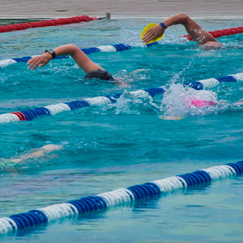Schwimmkurs Thun