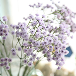 New-Qualified-Purple-Artificial-font-b-Silk-b-font-Fake-Flowers-Baby-s-Breath-Floral-font