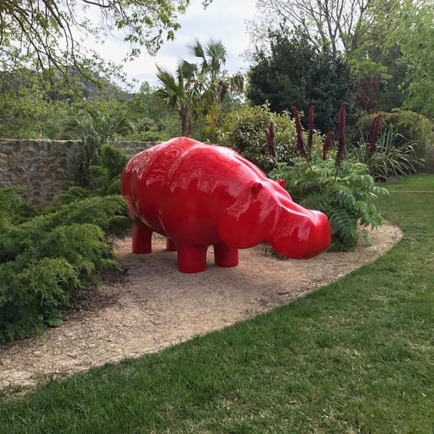 Hippo - Mallorca