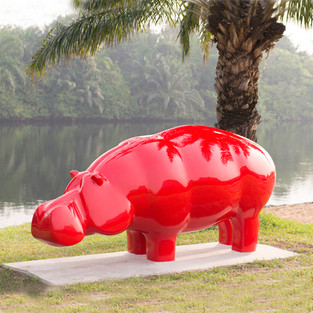 Hippo - Ghana