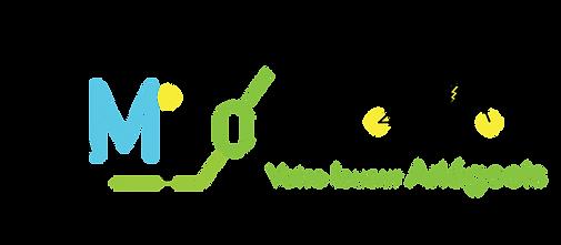 logo-caminovéloSSFD.png