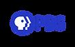 01_pbs_logo_BEODoWF.png