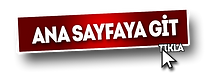 ANA-SAYFA-PİZZABULLS.png