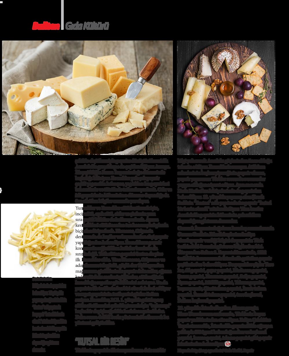 peynir-03.png
