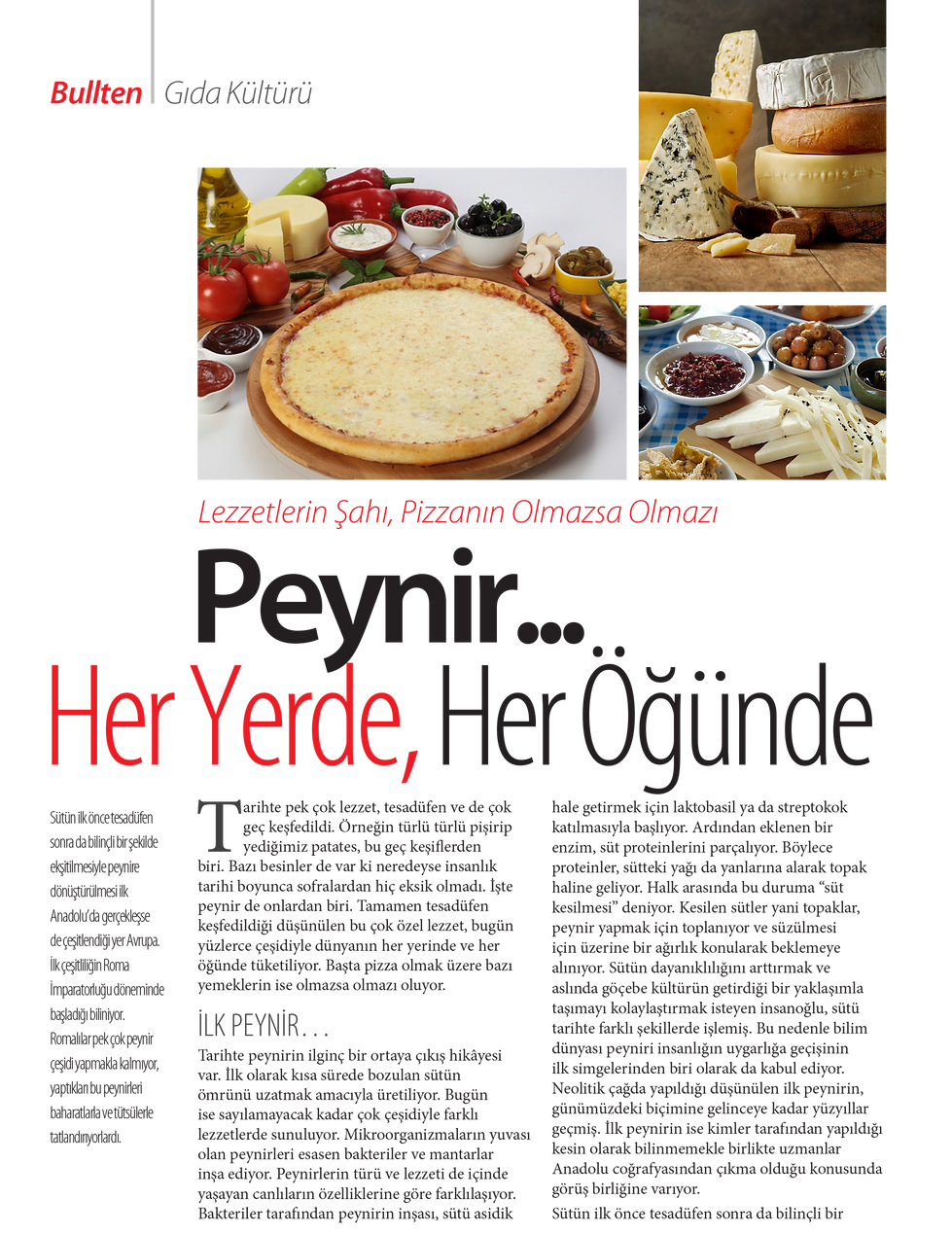 peynir-01.png