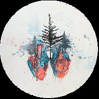 Da Vinci's Study of Heart and Seed trans