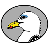 sandy_logo_cartoon_grey.png