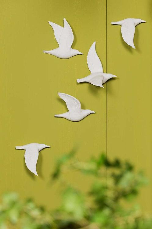 FREEDOM : Birds 5 pcs set