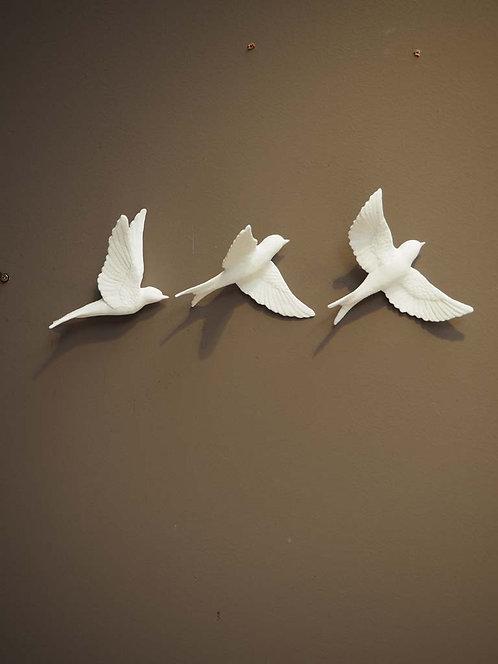 FREEDOM : Birds