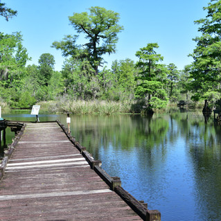 Old Santee Canal Park