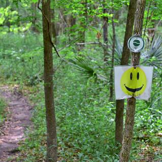 Biggin Creek Trail