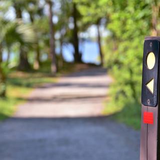 Daniel Island Trail