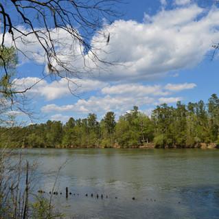 Santee River 4