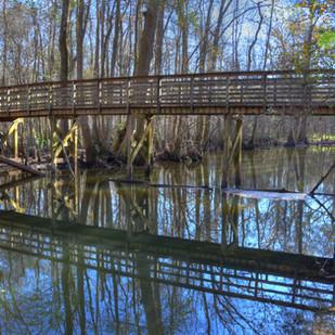Wadboo Swamp