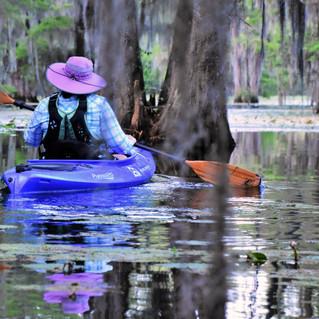 Swamp Fox 50 Trail