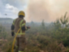 2020Wareham Forest Fire.jpg
