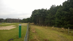 Pitches next to the forest boundary