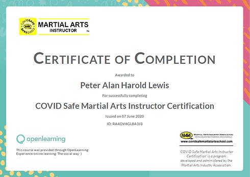 Covid Safe Martial Arts Instructor Certi