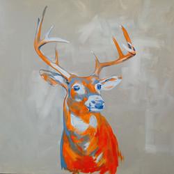 Deer In Hunter Orange