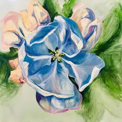 Peach Blue Blossom