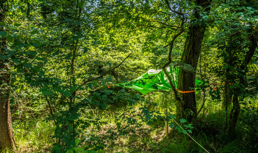 Area Tree Tents