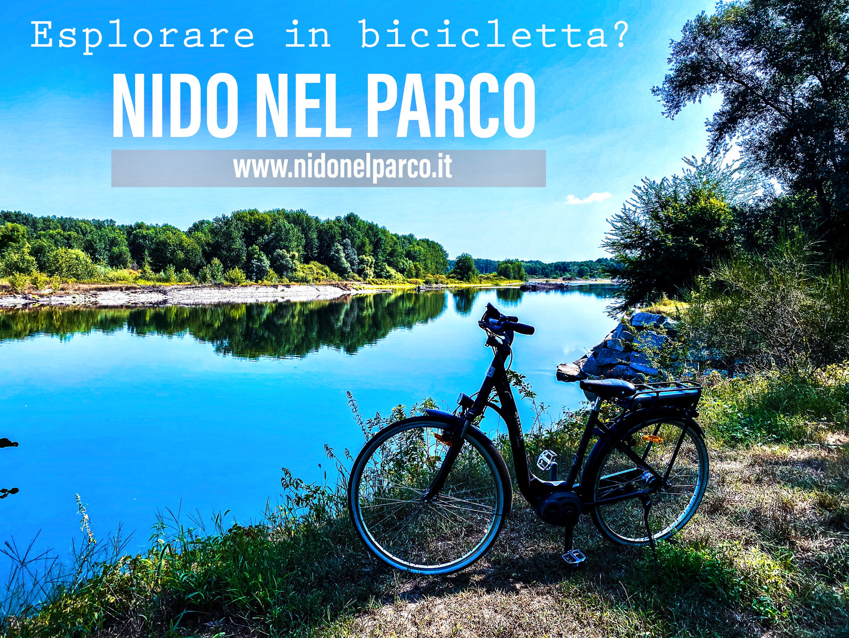 Bici Nido nel Parco.jpg