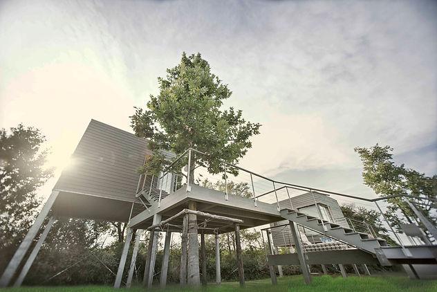 Casa sull'albero, The Grape, enoturismo, ecoturismo, natura, treehouse, ecoresort, bioedilizia