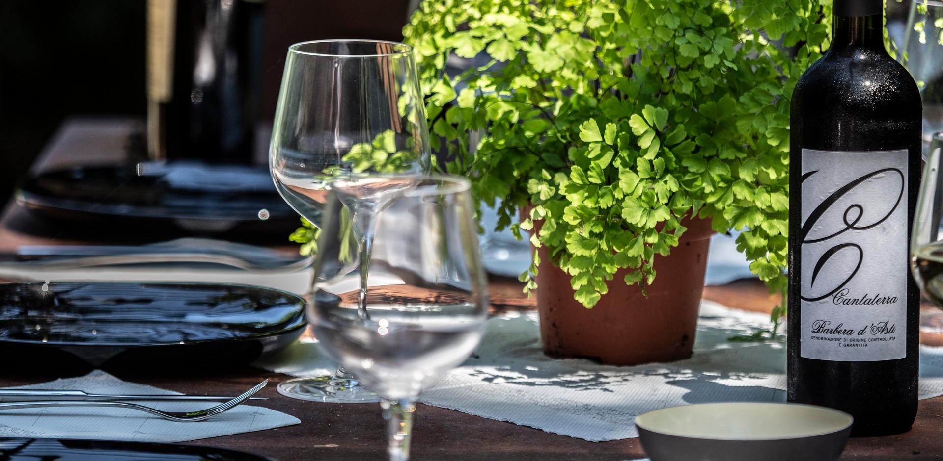I vini dell'Oltrepo