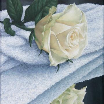 roos op handdoek