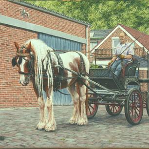 Dipsy het paard