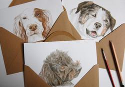 3 portraits in envelopes jun 2018