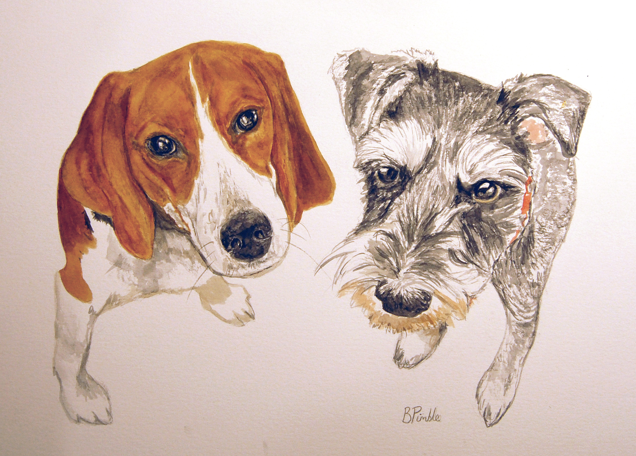 beagle and terrier
