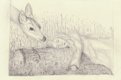 Asleep in the forest - Bryony Pimble