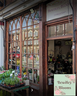 bewdley blooms 3.jpg