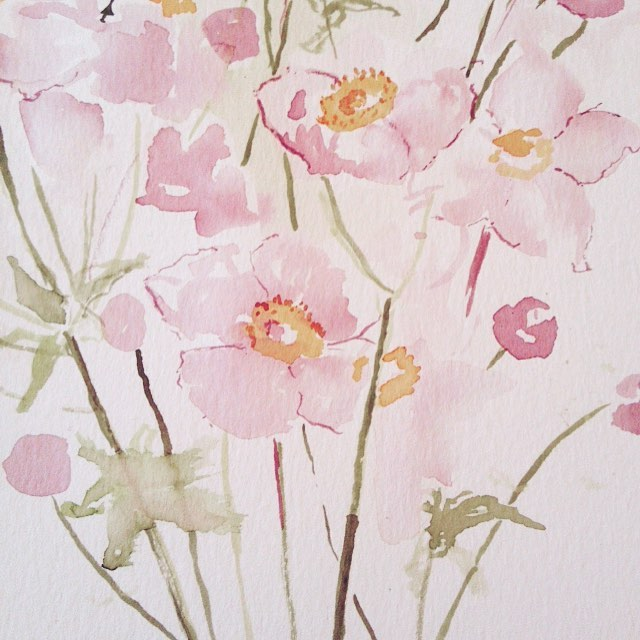 Japanese Anemone (watercolour) 2016